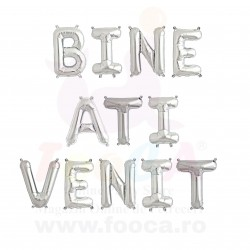 "SET 12 Baloane Folie ""BINE ATI VENIT"", 66cm FooCA, Argintiu si Diverse..."