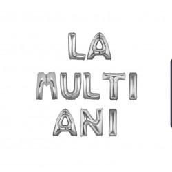 "Ghirlanda ""LA MULTI ANI"" din Baloane Folie Argintii, 35 cm"