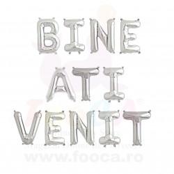 "SET 12 Baloane Folie ""BINE ATI VENIT"", 35cm FooCA, Argintiu si alte..."